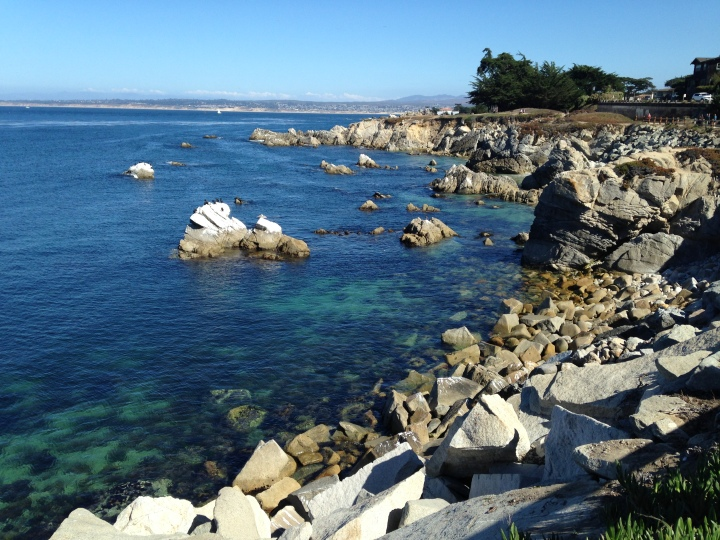 Pebble Beach Coastline